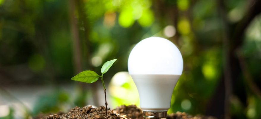 Come lavorare nel campo delle energie rinnovabili
